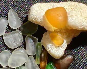 Beach Glass or Sea Glass of Hawaii beach  Rare bright MARIGOLD! Rare colors! Bulk Sea Glass! Rare colors!