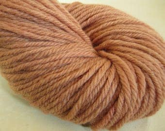 Willow Bark Natural Dye Wool Yarn - 9 Year Anniversary Gift - Wisconsin Local Color - YAB101737 - 100 grams