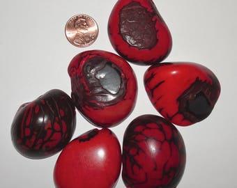6 Orange Tagua Nut Bead, Top Slices, Organic Beads, Natural Beads, Vegetable Ivory Beads, EcoBeads 3