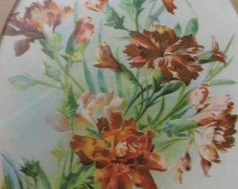 Vintage Framed ANTIQUE Chromo  Lithograph Dated 1896 of Wild Flowers