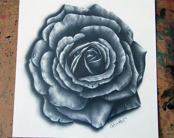 ORIGINAL DRAWING Rose 9x9 inch Pencil Drawing by Carissa Rose Realistic Flower Art