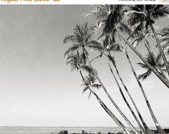 "SALE Palm Tree Photography, Black And White Palm Tree Wall Art, Island, Ocean, Large Palm Tree Wall Art, ""Palm Tree Island"""