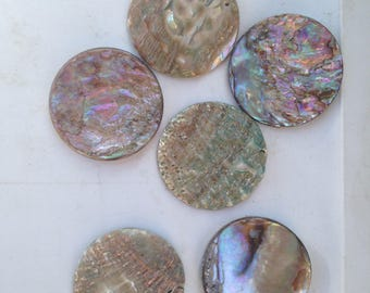 Custom listing for abalone