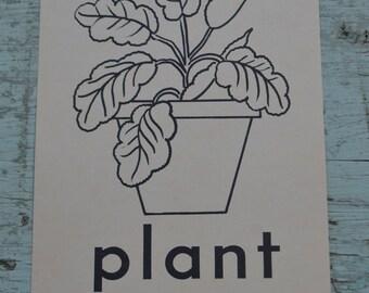 Vintage Ephemera 1950s Flash Cards Learning Picture - Plant