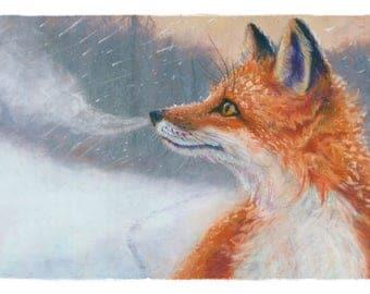 RED FOX Art Prints by illustrator Kate Garchinsky