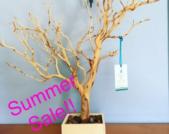 """24"""" All Natural Jewelry Tree / Jewelry Organizer shipong to east coast"""