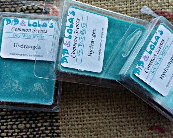 Hydrangea Wax Melt - Pip & Lola's Common Scents - Soy Candle Wax, Wax Tarts, Wax Melt, Soy Wax, Clamshell Melts, Candle melt, Wax warmer