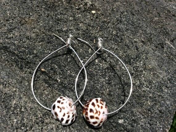 Hawaiian Puka Shell, Silver Hoop Earrings