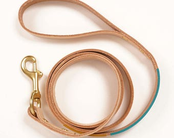 Leather Dog Leash with Colorblock Detail | EASTWOOD