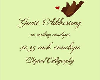 PRINT guest names and addresses on mailing envelopes