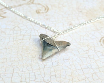 The Sydney- Fossil Shark Tooth Sterling Wire Wrapped Necklace- Shark Week, Ocean Jewelry