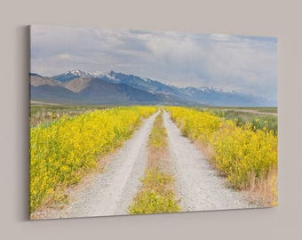 Wild Lonely Road, Nevada Landscape, Canvas Wrap, Wildflower Photography, Adventure, Spring