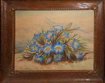 vintage watercolor of blue gentian flower s in landscape signed