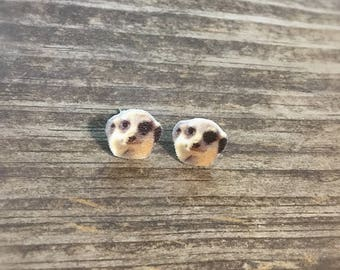 Meerkat earrings jewelry wildlife wild animal