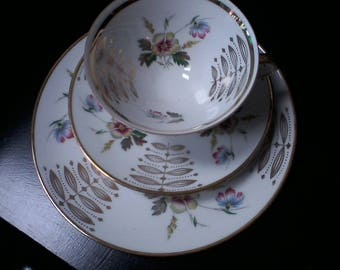 Winterling Cup, Saucer and Cake Plate Trio, Fine China, China Replacement , Barvaria