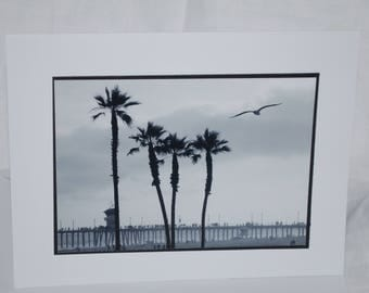 photo card, black and white palm trees, Huntington Beach photograph