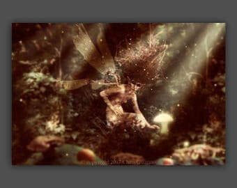 """Fairytale, forest, enchanted, pixie, sprite, nymph, woodland, witchcraft, fantasy art, fable, mythic, """"The Forest of the Root Fairy"""" Canvas"""