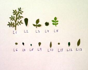 Miniature paper leaves for dollshouse flowers L1