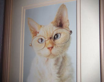 Whimsical Cat Picture . Framed Cat Picture. Humorous Cat Picture . Framed Cat Art . Gift for Her .  Cat Gift Ideas .   Cute Cat .
