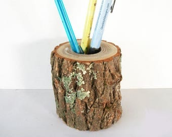 Rustic Wood Pencil Holder In Sassafras Log Office Decor Desk Pen Holder