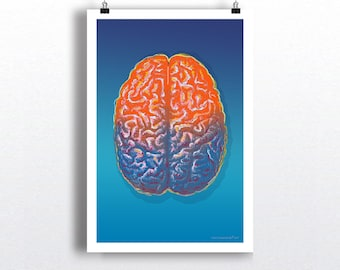 "Pop Art Brain 01, 13"" x 19"" Fine Art Print, Anatomy Medical print, Neurologist Gift, Neurosurgeon gift, Psychologist gift, Warhol Style art"
