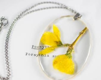 Forsythia (Forsythia spp) Botanical Jewelry, Floral Necklace, Gifts for Gardeners, Real Flower Resin, Woodland Aesthetic, Boho Accessories