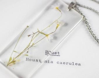 Bluet (Houstonia caerulea) Botany Jewelry, Gifts for Naturalists, Appalachian Plants, Gardening Jewelry, Wildflower Necklace, Mori Kei Style
