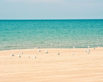 Lake Michigan Tranquility, Michigan, Michigan City, Indiana, Beach House decor, Cabin decor, peaceful art, nautical, seagulls, shore