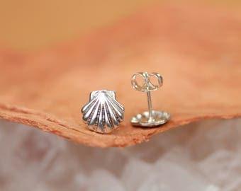 Silver shell earrings - beachy earrings - scallop earrings - tiny shell stud earrings