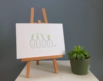 Four Bottled Plants - Watercolour