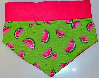 Watermelon Bandana and Twist Headband