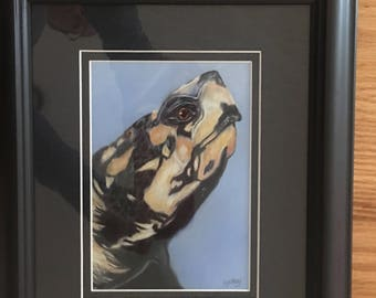 Original pastel painting of turtle