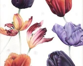 "Tulip print | Flower watercolour | Botanical art | 7"" x 9.5"" | Print of original watercolor | Spring flowers | Helen Lush"