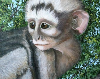 Baby Vervet Monkey Treetop Home 16x12 Inch Wrapped Canvas Acrylic Painting
