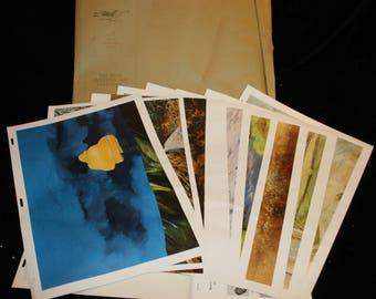 "Vtg Fine American Art Calendar 8th Ed 1970 Wands Gibberd Ruby Throat 17""x12"" Prints  Felicity  Lincoln Red Ranges Artists"