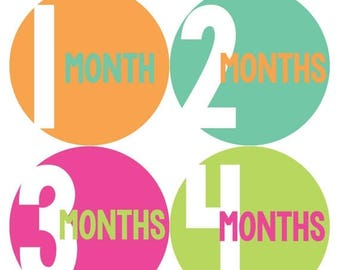 Monthly Baby Stickers Baby Month Stickers Baby Girl Month Stickers Monthly Photo Stickers Monthly Milestone Stickers 302