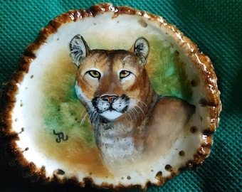"Cougar (Mountain Lion) Belt Buckle 3.5"" wide original oil painting, on genuine, natural dark brown Elk antler rosette with big Cat painting"