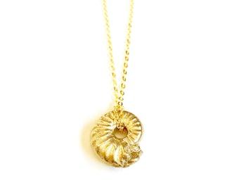 Puira Necklace  - Brass Cast Snail Shell Fossil - Golden Brass Chain