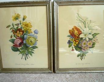 Botonicals Floral - Lithograph, Print Frame ~ No. 2- Renocule, Anemones, Penseis, Aster ~No 18- Lys,Pensist, Tulipe, Oreillesd Ours Loucis.