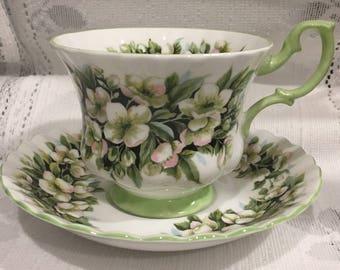 English Vintage ROYAL ALBERT Fine Bone China Tea Cup & Saucer - Fragrance Series - Orange Blossom