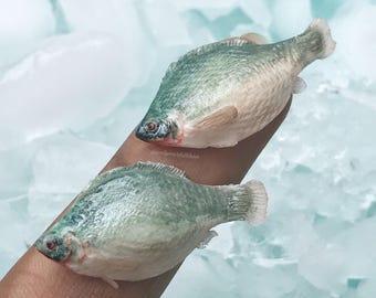 Handmade miniature sculpture, miniature fish, tilapia, polymer clay handmade dollhouse miniatures, highly realistic, miniature tilapia