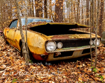 1967 Camaro in the woods Photograph