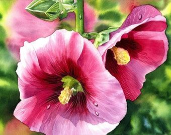 Hollyhock, ORIGINAL watercolor painting, beautiful flowers, watercolor flower, watercolor hollyhock, fine art, original art, EsperoArt.