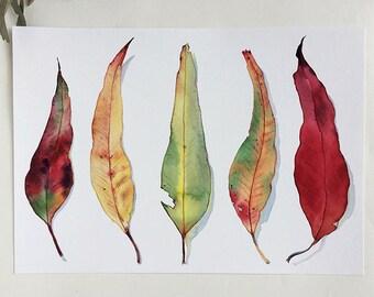 A3 horizontal wall art print - Eucalyptus leaf print - contemporary art botanical print A3 - Australian nature decor - gum leaves print