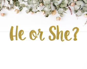 HE OR SHE? (S7) - glitter banner / baby shower banner / gender reveal party / decoration / sign / backdrop
