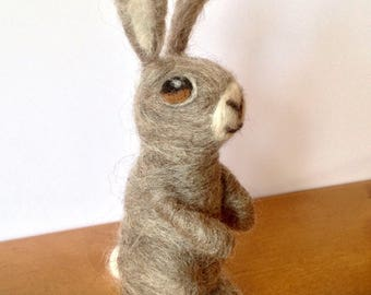 Bunny rabbit needle felting kit with easy to follow instructions - DIY - GIFT