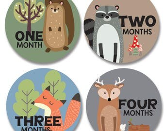 Woodland Month Stickers Boy, Woodland Baby Monthly Stickers, Fox, Deer, Beaver, Raccoon, woodland animals