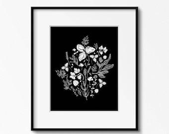 Herbs Black and White Botanical Drawing Art Print