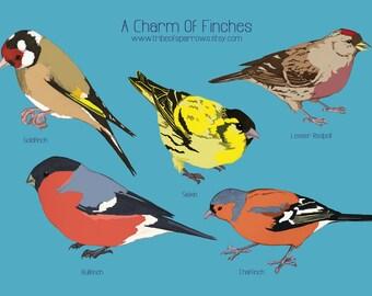 A5 Finches Print