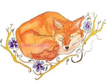 Cute Fox, sleeping, watercolour, art,  print.